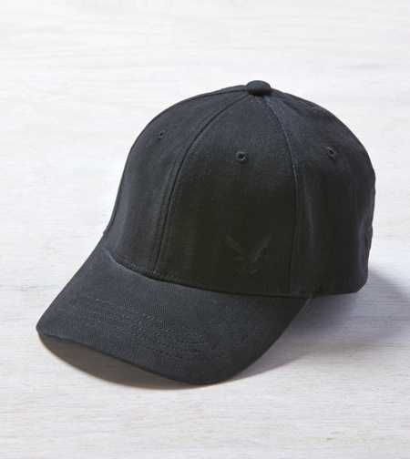 AEO Eagle Fitted Cap