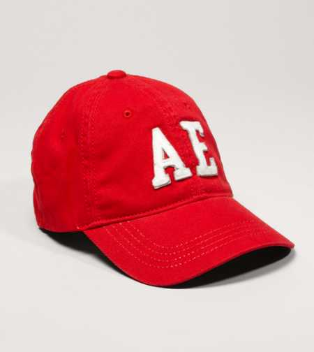 AE Logo Fitted Baseball Cap
