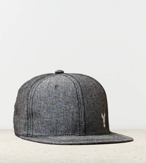 Grey AE Chambray Baseball Cap