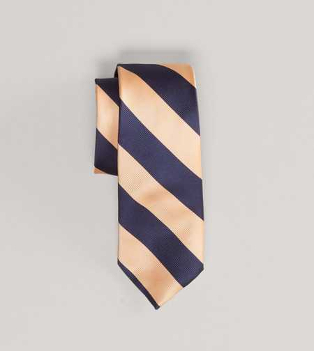 AEO Striped Tie