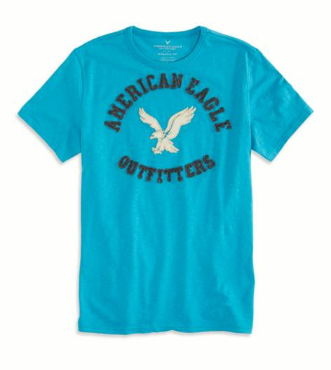 Fresh Teal AEO Factory Applique Graphic T-Shirt