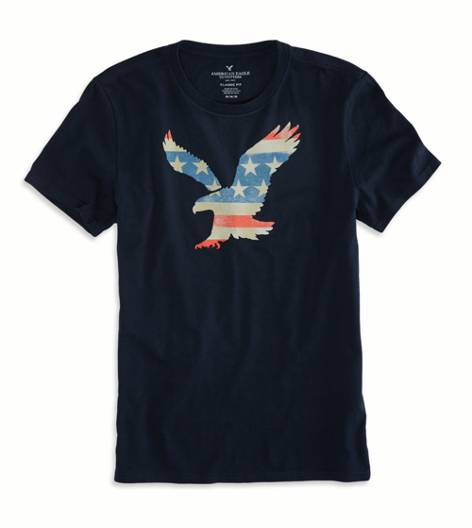 Fleet Navy AEO Factory Printed Graphic T-Shirt
