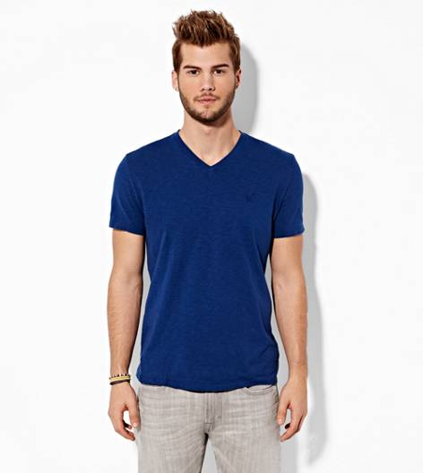 Petal Blue AEO Legend V-Neck T-Shirt
