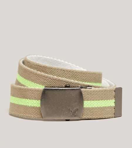 AEO Striped Canvas Belt