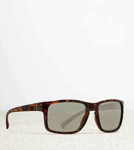 Brown AEO Tortoise Square Sunglasses
