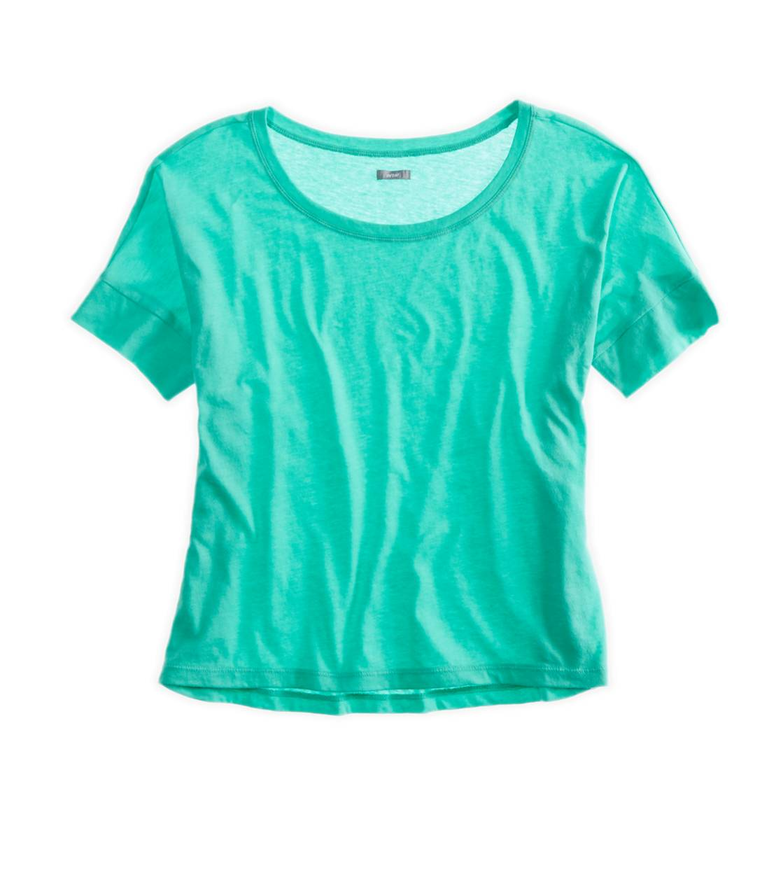 Mint Leaf Aerie Crop T-Shirt
