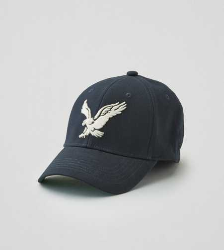AEO Eagle Fitted Baseball Cap