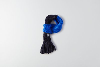 American Beagle Outfitters Colorblock Scarf