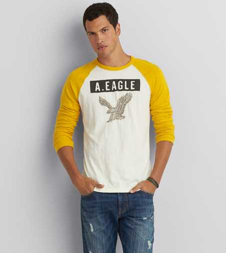 AEO Applique Graphic Vintage T-Shirt